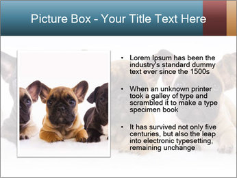 0000072026 PowerPoint Template - Slide 13