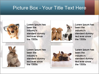 0000072026 PowerPoint Template - Slide 14