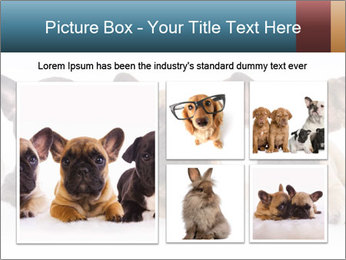 0000072026 PowerPoint Template - Slide 19