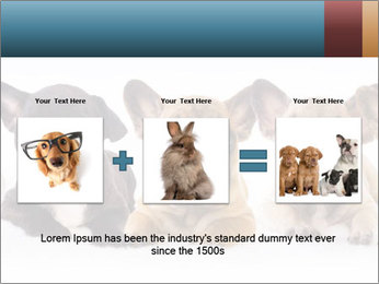 0000072026 PowerPoint Template - Slide 22
