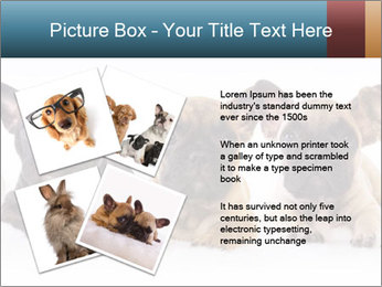 0000072026 PowerPoint Template - Slide 23