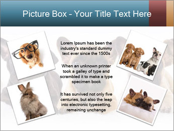 0000072026 PowerPoint Template - Slide 24