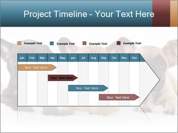 0000072026 PowerPoint Template - Slide 25