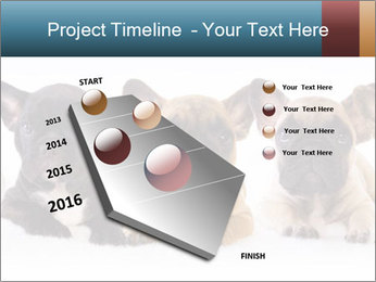 0000072026 PowerPoint Template - Slide 26