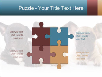 0000072026 PowerPoint Template - Slide 43