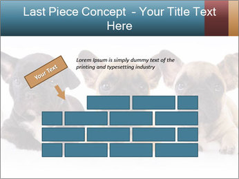 0000072026 PowerPoint Template - Slide 46