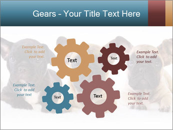0000072026 PowerPoint Template - Slide 47