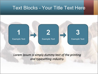 0000072026 PowerPoint Template - Slide 71