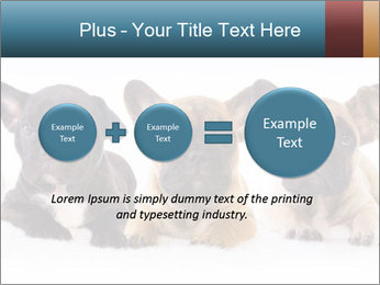 0000072026 PowerPoint Template - Slide 75