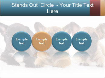 0000072026 PowerPoint Template - Slide 76