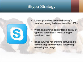 0000072026 PowerPoint Template - Slide 8