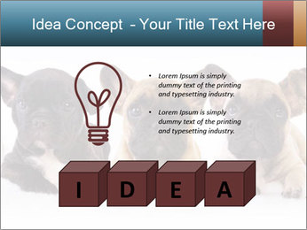 0000072026 PowerPoint Template - Slide 80