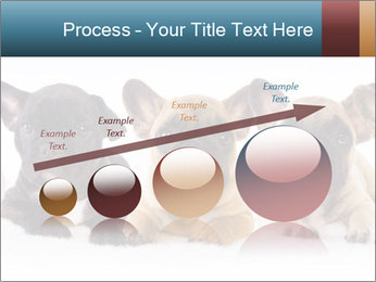 0000072026 PowerPoint Template - Slide 87