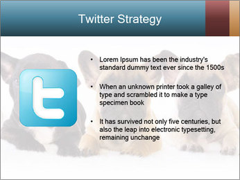 0000072026 PowerPoint Template - Slide 9