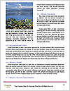 0000072028 Word Template - Page 4