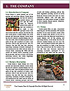 0000072035 Word Template - Page 3