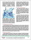 0000072038 Word Templates - Page 4