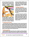 0000072041 Word Template - Page 4