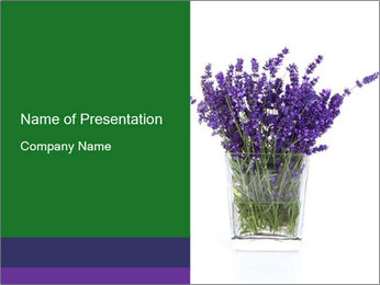 0000072044 PowerPoint Template - Slide 1