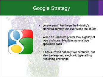 0000072044 PowerPoint Template - Slide 10