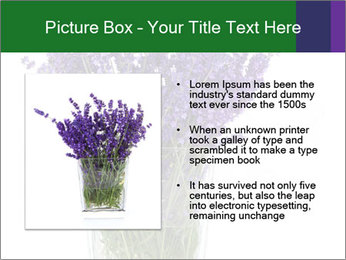 0000072044 PowerPoint Template - Slide 13