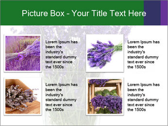 0000072044 PowerPoint Template - Slide 14