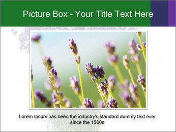 0000072044 PowerPoint Template - Slide 15