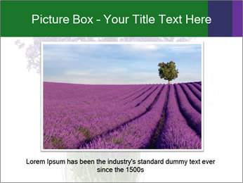 0000072044 PowerPoint Template - Slide 16