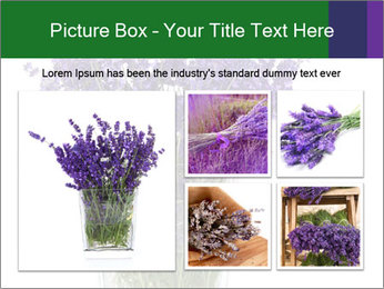 0000072044 PowerPoint Template - Slide 19