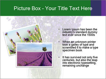0000072044 PowerPoint Template - Slide 20