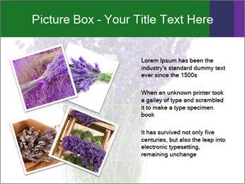 0000072044 PowerPoint Template - Slide 23