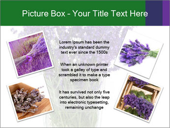 0000072044 PowerPoint Template - Slide 24