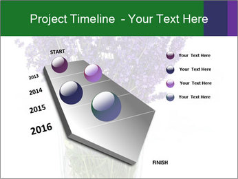 0000072044 PowerPoint Template - Slide 26