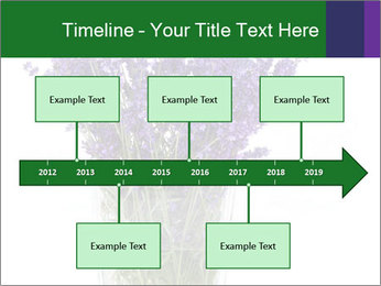 0000072044 PowerPoint Template - Slide 28