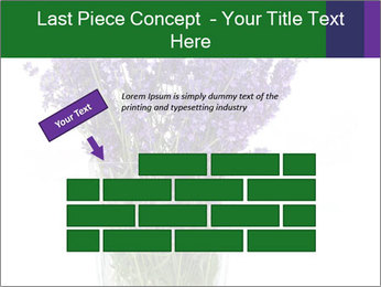 0000072044 PowerPoint Template - Slide 46