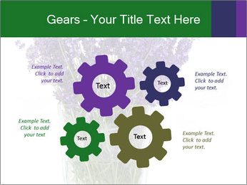 0000072044 PowerPoint Template - Slide 47
