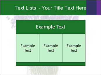 0000072044 PowerPoint Template - Slide 59