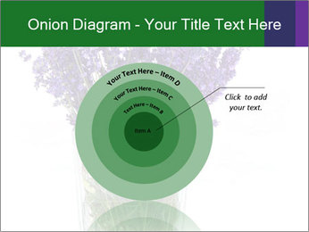 0000072044 PowerPoint Template - Slide 61