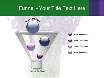 0000072044 PowerPoint Template - Slide 63