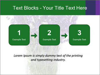 0000072044 PowerPoint Template - Slide 71