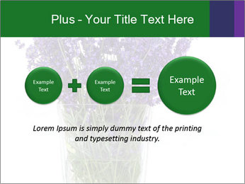 0000072044 PowerPoint Template - Slide 75