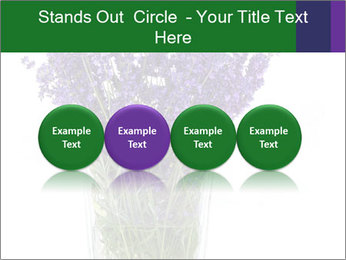 0000072044 PowerPoint Template - Slide 76