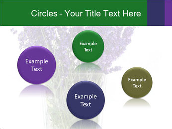 0000072044 PowerPoint Template - Slide 77