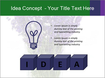 0000072044 PowerPoint Template - Slide 80