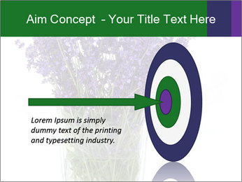 0000072044 PowerPoint Template - Slide 83
