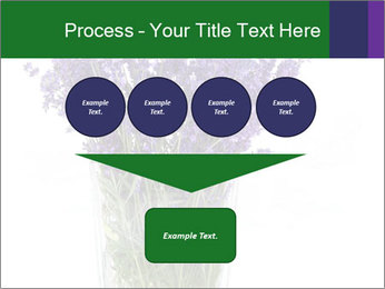 0000072044 PowerPoint Template - Slide 93