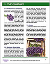 0000072044 Word Templates - Page 3