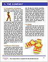 0000072049 Word Template - Page 3
