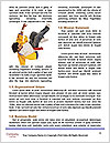 0000072049 Word Template - Page 4