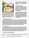 0000072057 Word Templates - Page 4